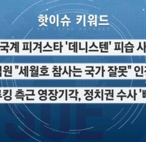 [핫이슈키워드] 데니스텐·세월호 참사·드루킹 측근 영장기각·유시민·진에어 결항