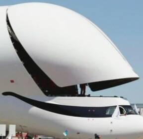 [오뉴스 오!클릭] 하늘 나는 '웃는 고래'가 나타났다!