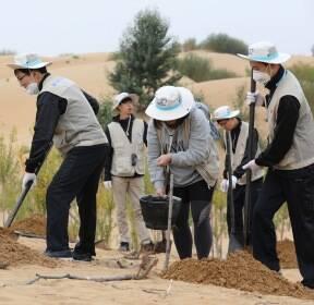 [서소문사진관]황사 발원지 쿠부치 사막에서 희망의 나무심기
