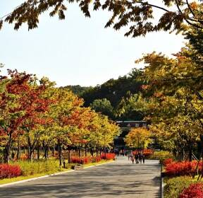 [포토친구] 서울대공원의 초가을