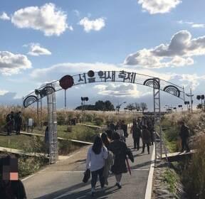 """""""남는 건 사진뿐?"""" 포토존에 몸살앓는 가을축제·공원"""