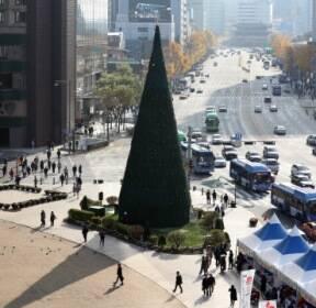 [렌즈 속 세상] 서울 광장 '성탄트리' 17일 불 밝힌다