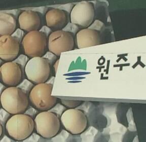 대량 유통된 '깨진 달걀'..정부 단속 어떻게 피했나