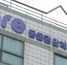 """'안락사 논란' 케어 또 삐걱..""""대표 폭언·일방적 구조조정"""""""