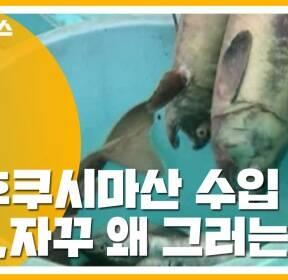 """[자막뉴스] """"후쿠시마산 수입 계속 요구""""..日 어이없는 주장 왜?"""