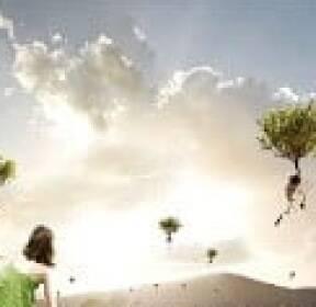 [사진이 있는 아침] 나무가 자라서 하늘로 올라가네
