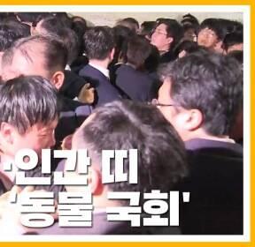 [자막뉴스] 비명 난무, 119 출동까지..난장판 된 '동물 국회'