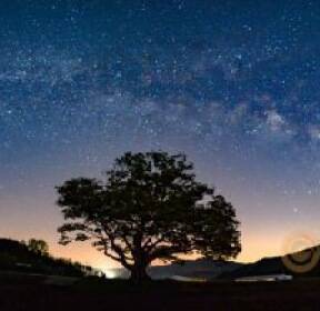 [앵글속세상]초여름, 밤(夜)의 보석들
