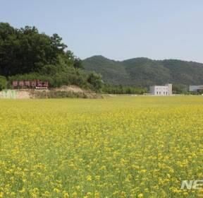 [뉴시스 앵글]충북혁신도시 '어울림 꽃단지' 개장
