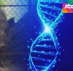 """""""유전자형 같아""""..멧돼지 매개로 중국서 유입 가능성"""