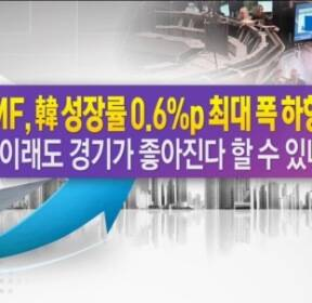 IMF, 韓 성장률 0.6%p 최대폭 하향..이래도 경기 좋아진다 할 수 있나 [한상춘의 지금 세계는]