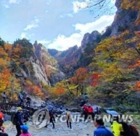 """""""만산홍엽 불타네"""" 전국 가을빛 절정..너도나도 산으로"""