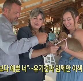 """[클릭@지구촌] """"꽃보다 예쁜 너""""..유기견과 함께한 이색 결혼식"""