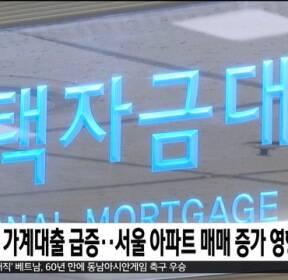11월 가계대출 급증..서울 아파트 매매 증가 영향