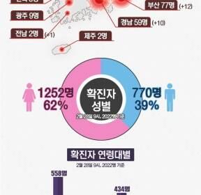 [그래픽뉴스] 코로나19 현황(29일 9시 기준)