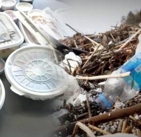 [탐사플러스]① '집콕'에 플라스틱 폭증..제주 너머 태평양까지