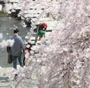 '어느샌가 벌써 봄이 와 있네'