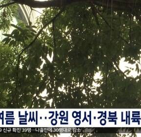 초여름 날씨..강원 영서·경북 내륙 소나기