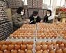 계란 한 판 가격 6천원 돌파..고병원성 AI 확산에 오름세