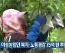 강원도, 여성농업인 복지·노동경감 75억 원 투입