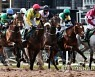 BRITAIN HORSE RACING GRAND NATIONAL FESTIVAL