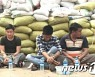 미얀마 반군, 군부에 돈내고 석방된 아동 강간범 사형 집행