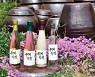 [막걸리 산행] 전통주로 표현한 사계.. 트럼프도 맛본 '만찬주'