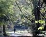 봄날의 조선왕릉 숲길 걸어봤나요?..6월 말까지 한정 개방