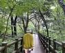 비오는 날이 더 좋다..걷고, 달리는 제주 숲여행