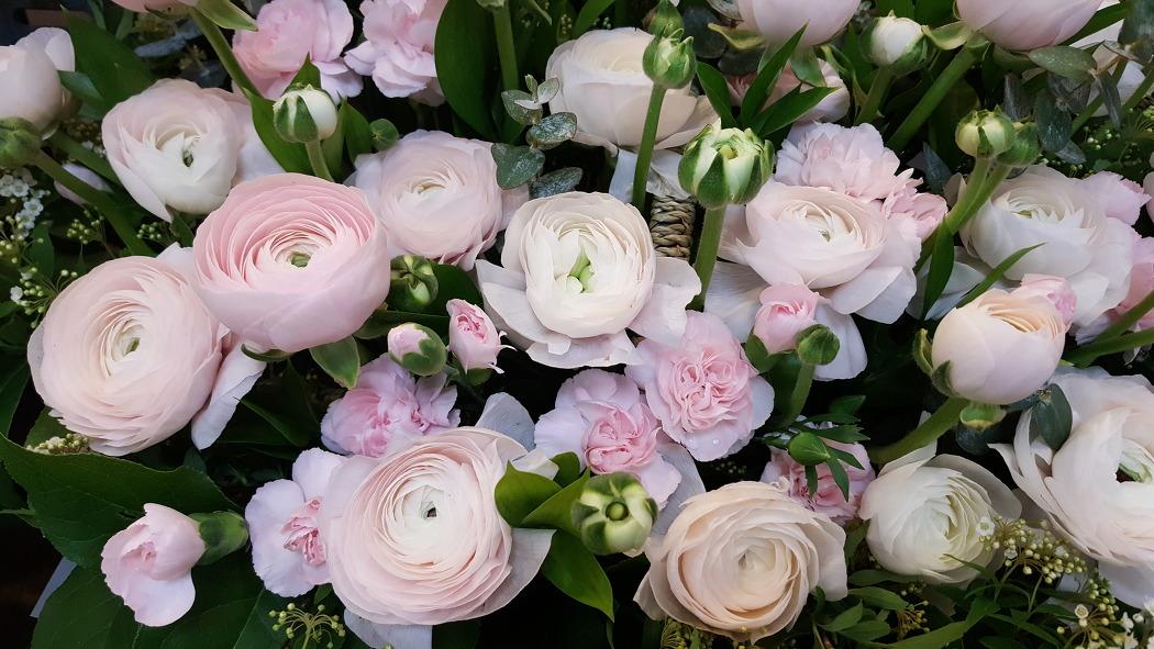 고속터미널 화원에서 찍은 예쁜 꽃들