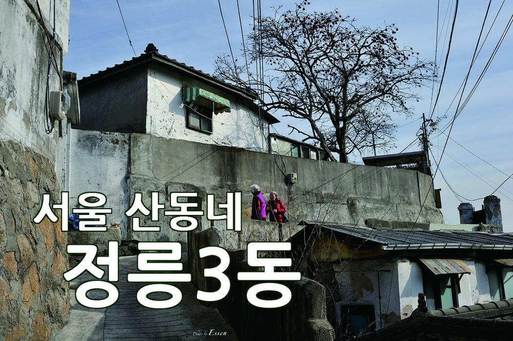 한국의 산동네 / 서울 달동네 / 성북구 정릉3동