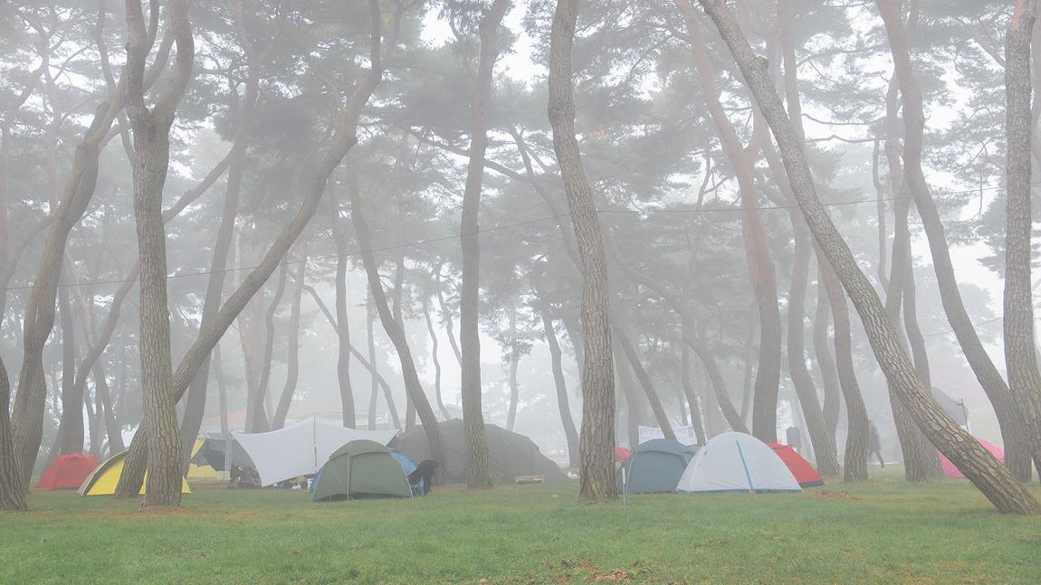 안개낀 캠핑장