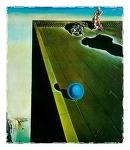 현기증 | 살바도르 달리(Salvador Dali, 1904-1989)