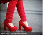 올 봄, 거리에서 살펴본 매력적인 여자 구두