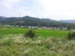 안성부동산의 희망 귀농귀촌지 추천 - 금광면(삼흥/사흥/오흥리)