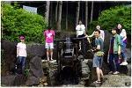 2010.06.27 축령산 휴양림 (2)