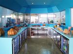 튀니지의 실험적 친화경 휴양소 디자인