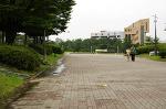 와동체육공원