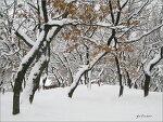 유난히 눈이 많았던 올 겨울..