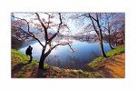 봄의 빛깔