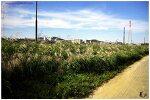 2011.10.02 서울숲, 자전거타기
