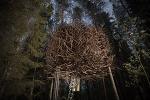 숲속의 둥지호텔 - Treehotel