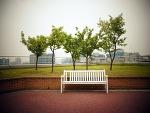 사진으로 그리는 한 해. 가을. 2013 티스토리 사진 공모전.