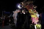 윤중로 벚꽃축제길 산책...