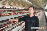 풍세 호중농장 - 무항생제 계란, 구운계란