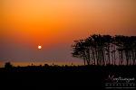 memory of Jeju island