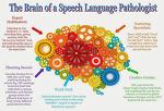 연령별 언어발달 및 두뇌발달