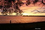 캐네디언 리비에라, 팍스빌...꿈 같은 바다 풍경