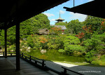 Ninna-ji Temple (仁和寺)