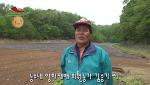 [충남/천안]학교급식 양파재배작목반 김승기